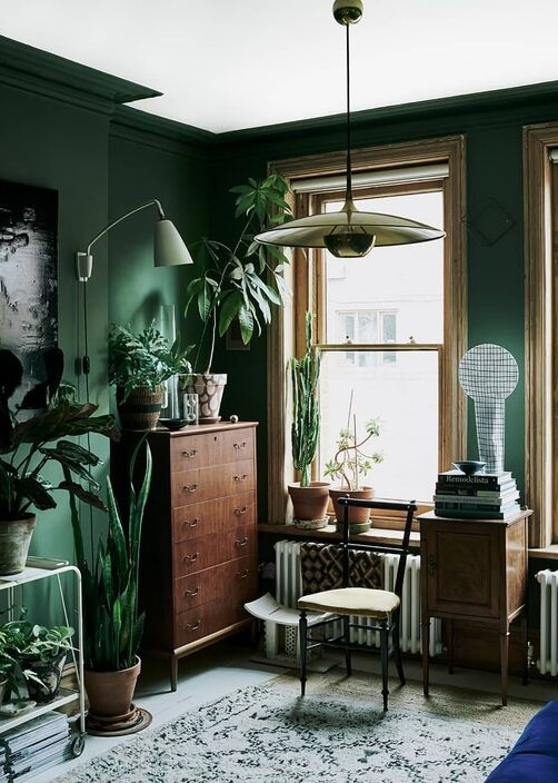 5 Tropical objects to brighten up a room